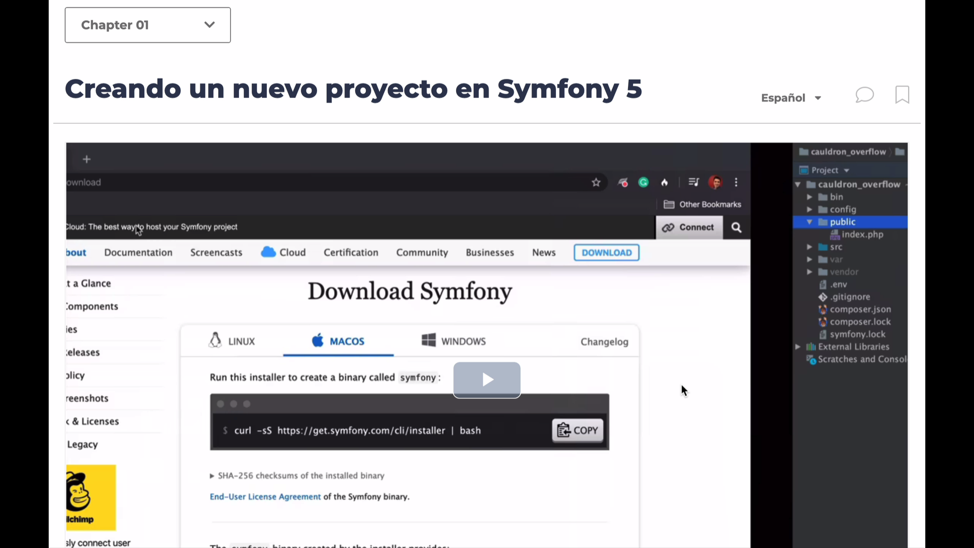 Video Player with Translations